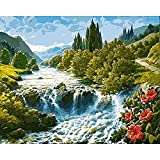 Paint by Numbers Boys DIY Christmas Decorations Kit Flores Silvestres en pequeña Cascada Art Paint Painting Sets Paint by Numbers Pinceles 40X50Cm Sin Marco