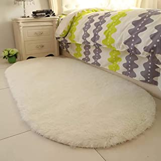 Redpol Colorful Oval Fluffy Area Rug Doormat Soft Anti-Slip Carpets Area Soft Shag Rugs for Home,Bedroom, Floor, Kids Room Decor