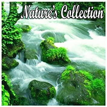 Natures Collection-Sounds for Spa, Yoga, Sleep, Massage, Healing, Tai Chi, Meditation and Relaxation