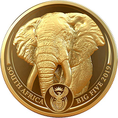 Power Coin Elephant Elefant Big Five 1 Oz Gold Münze 50 Rand South Africa 2019