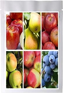 Bulk 4 Apple Tree Seeds Survival Seeds 200 Apple Seeds + 3 Free Plant Markers Empire