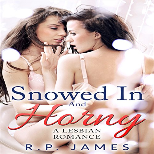 Snowed in and Horny audiobook cover art