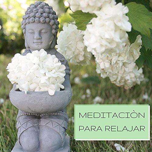 Meditaciòn para Relajar - Mùsica New Age para Relajar la Mente y el Cuerpo, Musica de Meditacion Instrumental para Sanar el Alma