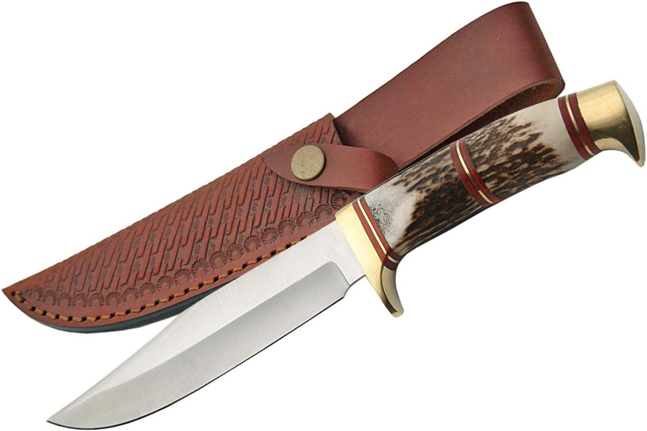 Szco Supplies Steel Recommended Knife Hunting Max 70% OFF Wolf