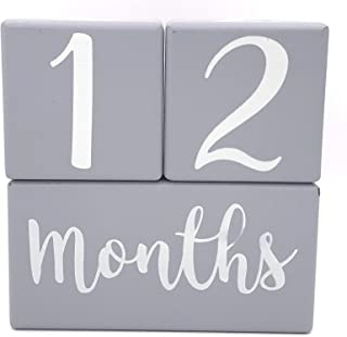 Baby Monthly Milestone Blocks, Age Blocks for Babies, Gifts for Boy or Girl, Gender Neutral, Shower Gift, Newborn Photography, Wood Number Block Month Growth Pictures, Wooden Milestones Photo Prop