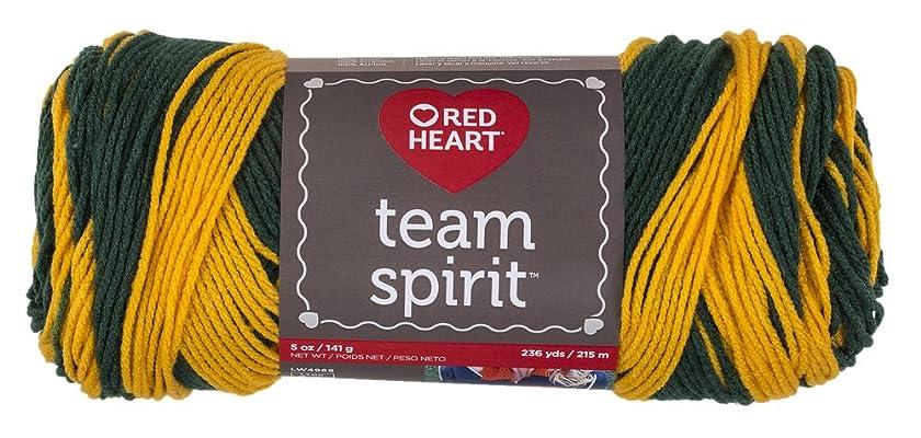 RED HEART  Team Spirit Yarn, Green/Gold