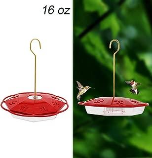 Best aspects hummingbird feeders Reviews