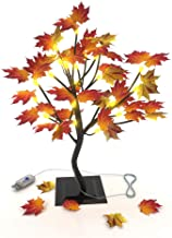 Lighted Maple Tree Tabletop Lamp - Decorating Gift Home Ornament 24 LED USB End Plug, Seasonal Fall Winter Decor Lighted A...