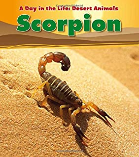 Best desert animals to color Reviews