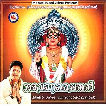 Saravanappaithal