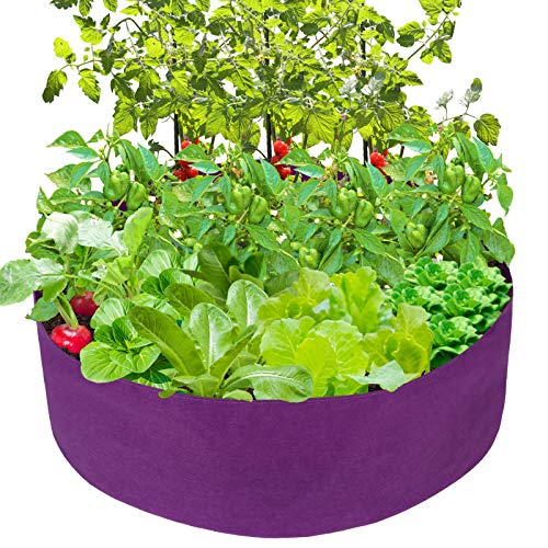 pannow Raised Garden Bed Fabric Raised Planting Bed Round Garden Grow Bag for Herb Flower Vegetable Plants Dia 36#039#039 x H 12#039#039 Purple