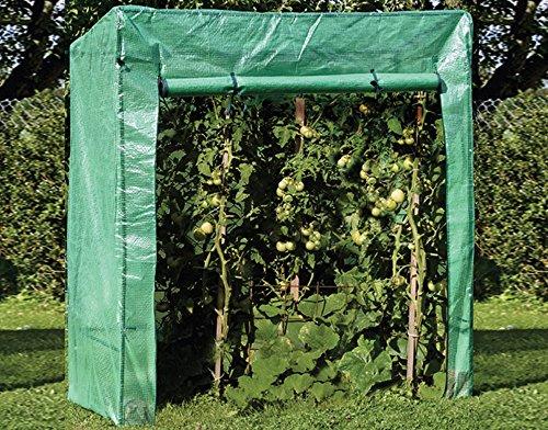 Brema 40.122 Tomatengewächshaus 170 x 190 x 80 cm
