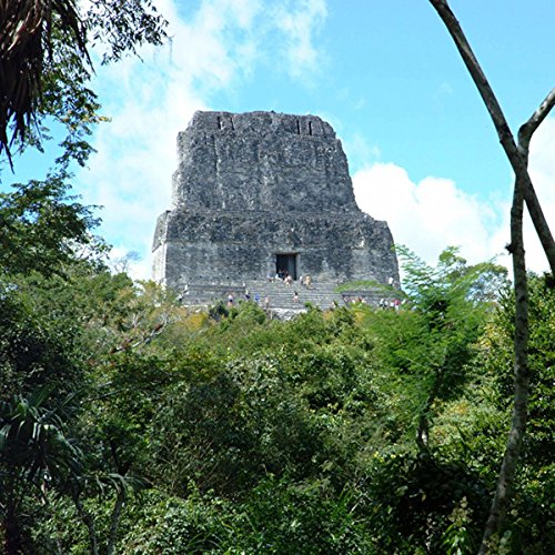 Guatemala's Tikal National Park - Animals and Plants cover art