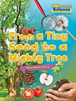 Fundamental Science Key Stage 1: From a Tiny Seed to a Mighty Tree: How Plants Grow 2016 (Fundamental Science Ks1)