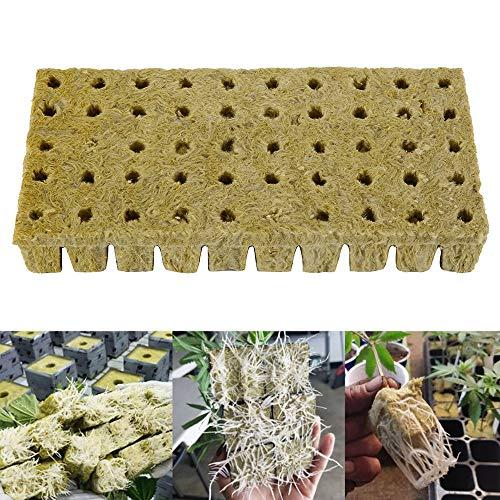 Laine de Roche Lot de 50 Cubes de Laine de Roche Hydroponique Grow Cubes Base de Compression Plateau de Laine de Roche pour Culture Compresse Soilless Plantation Boutures Clonage Propagation Plantes