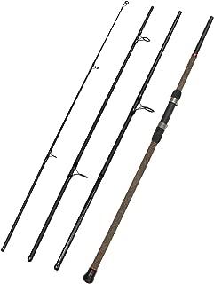 Fiblink Surf Spinning Fishing Rod 4-Piece Graphite Travel Fishing Rod (9-Feet & 10-Feet)