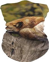 PINLLG Fox Animal Bandana met Filter Gezichtsdekking Wasbare Hoofdband voor Stof Sport Magische Sjaal Hals Gaiter Multifun...