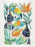 Gato Coquillette Tropical tucanes 60x 80cm Lienzo impresión, Multicolor