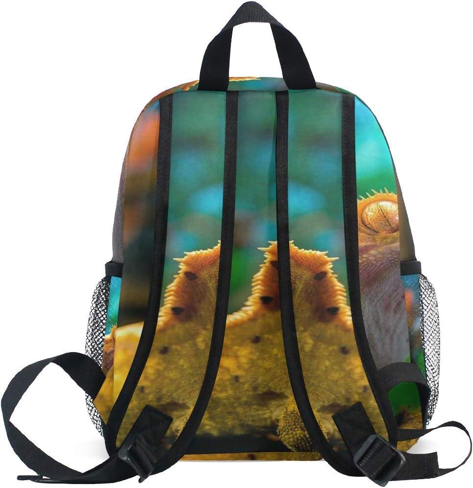 SLHFPX Reptile Gecko Lizard School Backpack for Girls Kids Kindergarten School Bags Child Bookbag