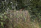Jack Pyke - Red de Camuflaje Invisible - English Oak - 4 x 1,5m