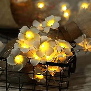 AceList 2 Sets Yellow Flowers Frangipani 20 LED String Light Hawaiian Foam Artificial Plumeria Flower Battery Powered Fairy Starry Lights for Wedding Beach Party