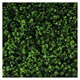 Milltown Merchants Artificial Hedge - Outdoor Artificial Plant - Great Boxwood and Ivy Substitute - Sound Diffuser Privacy Fence Hedge - Topiary Greenery Panels (4, Indian Aster)
