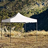 Regalos Miguel - Carpas Plegables 3x3 - Carpa 3x3 Basic - Blanco -...