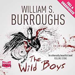 The Wild Boys cover art
