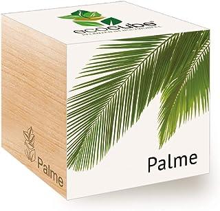 Feel Green Ecocube Palme, Idea Regalo sostenibile (100% Eco Friendly), Grow Your Own/Set di Coltivazione, Piante nel Dado ...
