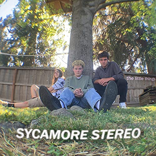 Sycamore Stereo