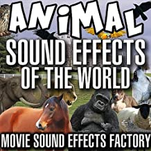 Best donkey sound effect mp3 Reviews