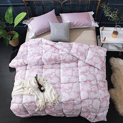 MMM Quilt Winter Thicker Student Dormroom Quilt individuel 4kg Gardez le printemps chaud et le ponçage d'automne Quilts (taille : 220 * 240cm(3.5kg))