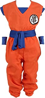 Dragon Ball Children Costume, Son Gokus Training Suit at Master Roshis