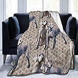 Not Applicable Adults Blankets,Manta De Cama Plegable Weimaraners para Perros para Adultos Graduantes Descanso 102 x 127cm