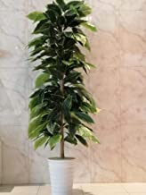 شجرة صناعية من اشجار فاكيوس ارتفاع 140سم زينة ديكور المنزل والحديقة من نباتات زهور