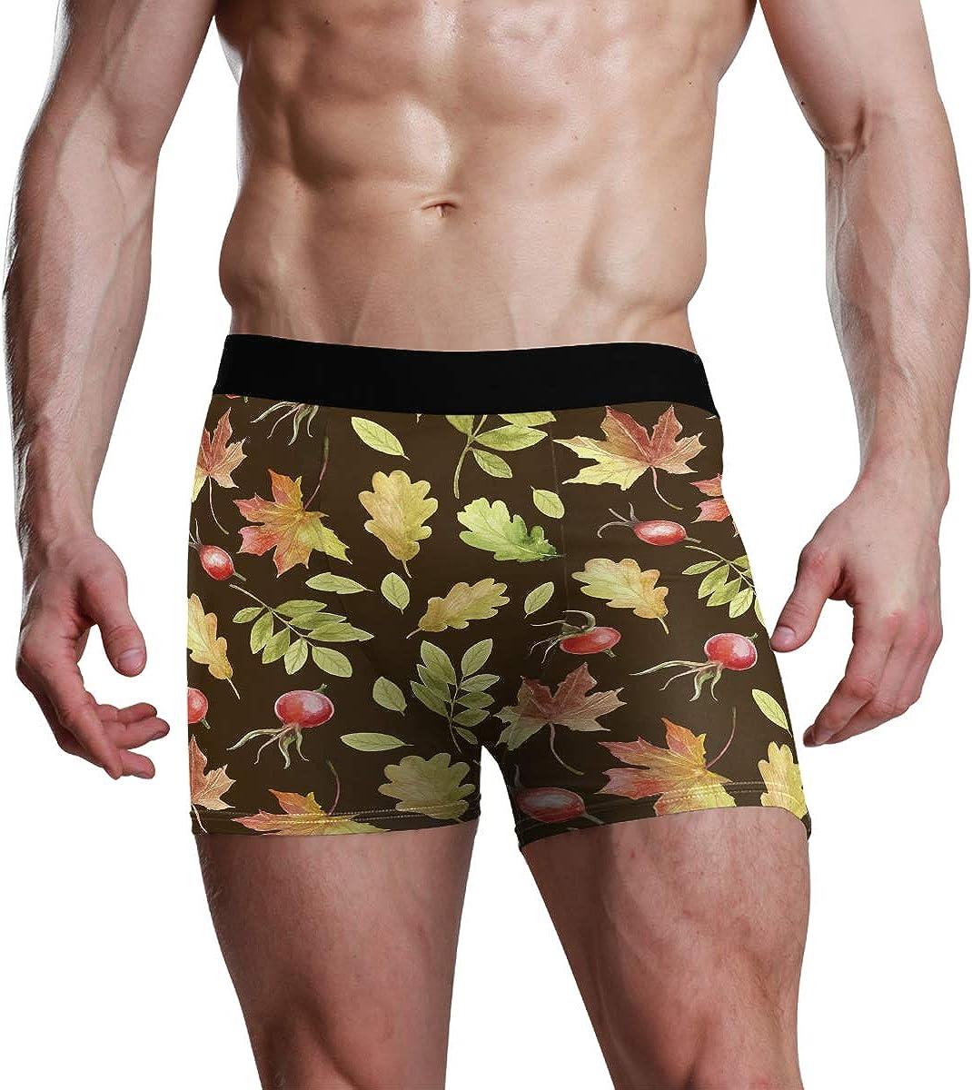 Mens Boxer Briefs Underwear Chic Watercolor Autumn Nature Unique Trunks Underwear Short Leg Boys