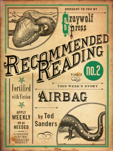 Airbag (Electric Literature's Recommended Reading Book 2) (English Edition)