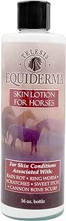 horse force balm gel