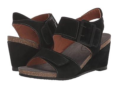 Taos Footwear High Society (Black) Women
