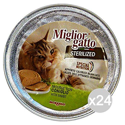 Miglior Gatto Beste Katze Ablagekorb, pulicomposto, Mehrfarbig, Einheitsgröße