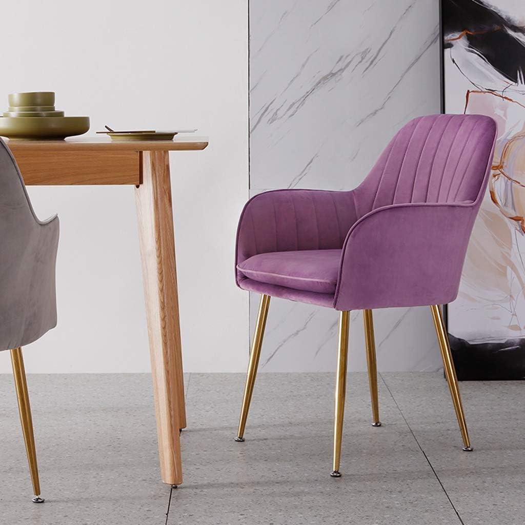 WDX- Chaise de Salle, Chaise de Bureau Simple, créative Dossier, Chaise Loisirs, Maison Adulte Chaise de Salle Confortable (Color : Gray) Purple