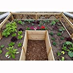 Square Raised Garden with Deer Fence Kit 5