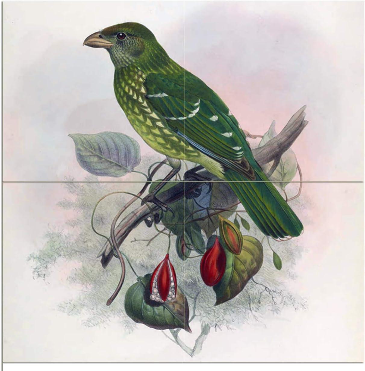 Tile Mural Tropical Green Bird Sale Elliot by Max 76% OFF Kitchen Giraund Daniel