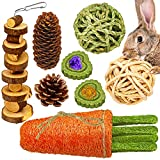 Rabbit Chew Toys, Bunny Chew Toys for Teeth, MWAOWM Small Animal Chew Molar Toys 100% Natural Timothy Grass Cake Loofah Carrot Toy for Rabbits, Chinchillas, Guinea Pigs, Hamsters