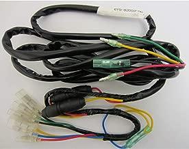 Yamaha 6Y5-83553-M0-00 Gauge Harness/2 Fuse +; New # 6Y5-83553-N0-00 Made by Yamaha