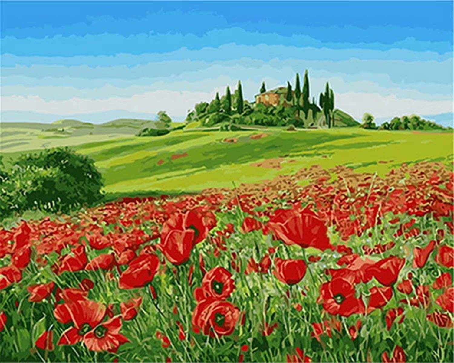 DIY Oil Painting Paint by Number Kit,Red Poppy Flower,Gift 16''X20'' Inch