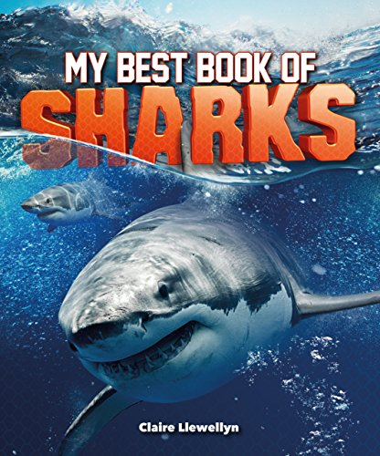 My Best Book of Sharks (The Best Book of)