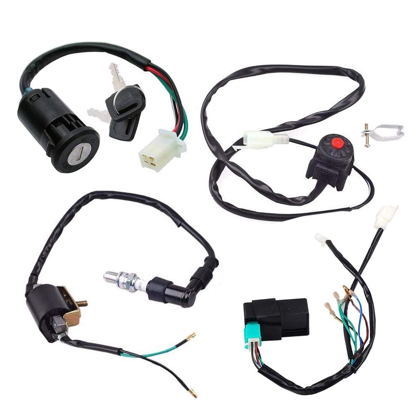 Triumilynn Wire Harness Wiring Loom CDI Ignition Coil Spark Plug Rebuild Kit for 50cc 70cc 90cc 110cc 125cc 160cc Engine ATV Quad Bike Go Kart Kick Start Dirt Pit Bike soooiraeztb799