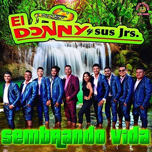 El Donny Y Sus Jrs.