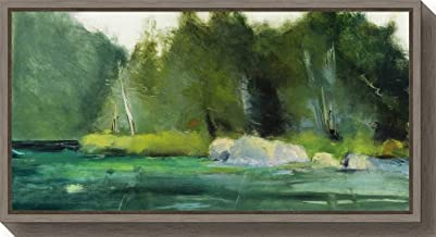 Framed Canvas Wall Art Print Lily Pond and Dark Woods by Martha Wakefield 26.50 x 14.00
